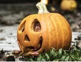 Citrouilles d'Halloween | Ballon-Muller.ch